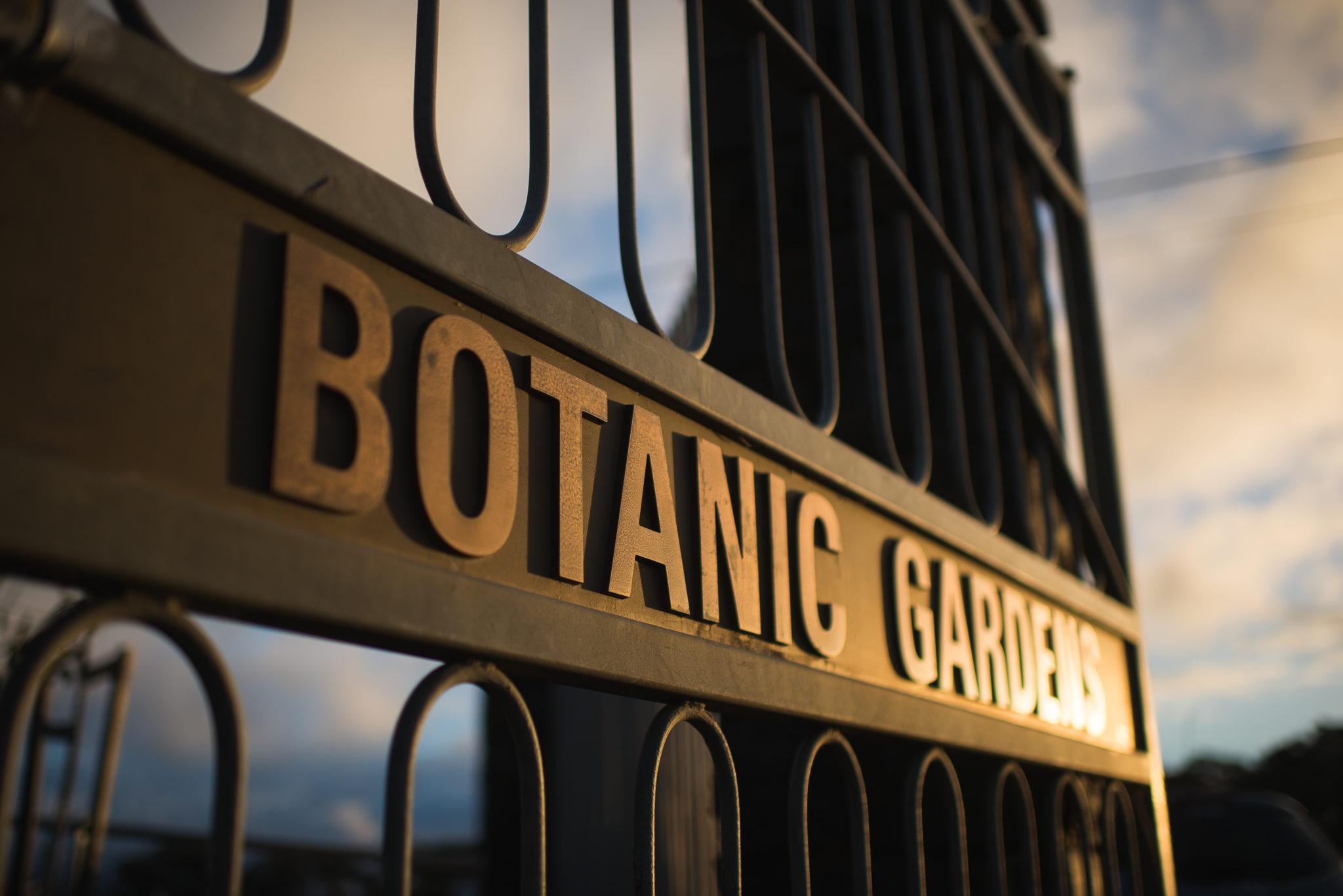 Image of the gate at Orange Botanical gardens at sunset