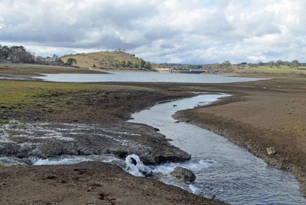 Stormwater flows into Suma Park dam