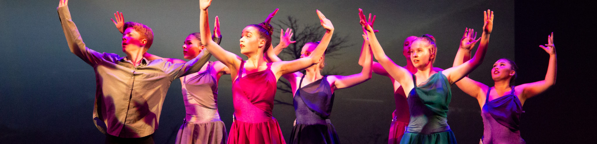 Fables from Afar - Dance Theatre of Orange